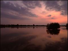 I went back tonight (Kirsten M Lentoft) Tags: trees sunset sky lake reflection water clouds denmark island silhouettes legacy naturesfinest damhussøen fineartphotos absolutelystunningscapes vosplusbellesphotos kirstenmlentoft daarklands magicunicornverybest selectbestfavorites