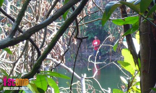 Stop fishing illegally at MacRitchie Reservoir!