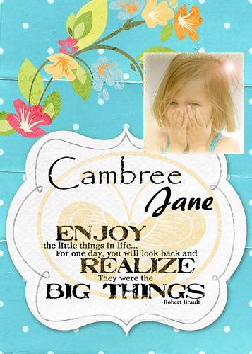 Cambree badge album cover