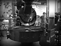 Alterra (.michael.newman.) Tags: coffee wisconsin work humboldt beans labor machine milwaukee roaster alterra riverwest probat