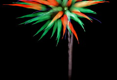 July 3rd Fireworks (TVGuy) Tags: holiday abstract field colorado downtown fireworks july denver 3rd coors yourerightthisisme