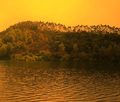 Scenary (kaipukur) Tags: orange sun sunlight india lake green nature water beautiful beauty flickr hill radiance kerala scenary treeline picnik shimmer munnar urvision