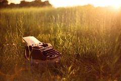 the letter i left unwritten (rockie nolan) Tags: summer sunlight field typewriter canon vintage golden warm retro 5d sunshin backlightin