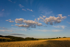 Summer Sky (Andreas Helke) Tags: summer sky cloud nature field canon germany landscape deutschland amazing europa europe y farm hill natur feld dslr landschaft canoneos350d f11 creidlitz twa getreide gerste gerrmany candreashelke canonefs1755mmf28isusm canon1755is donothide uploaded2009