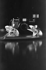 AF35M, the lotus (r.nial.bradshaw) Tags: camera blackandwhite bw film 35mm canon kodak depthoffield filmcamera yashica unprocessed caffenol bwdreams autoboy tlelectrox nocropnoshop caffenolc canonaf35m epsonv500 sixdollarworklight