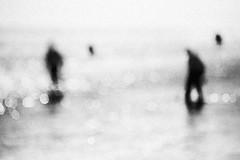Bath of light (Effe.Effe) Tags: sea blur mare bokeh grain outoffocus gleam luce sfocato vintagelens luccichio andwater pentacon135f28