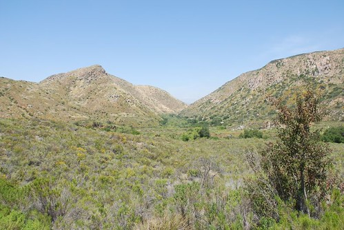 Mission Trails Gorge