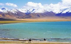 Nam Tso and Nyenchen Tanglha range (reurinkjan) Tags: nature tibet 2008 horserider snowmountains changtang namtsochukmo tibetanlandscape tengrinor janreurink damshungcounty damgzung    nyenchentanglharange