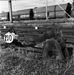 "leve (""Dama a Corte"") Tags: bw 120 6x6 mediumformat blackwhite railwaystation squareformat neopan400 bergamo fujiflim rolleicordva depositoferroviario viagavazzeni"