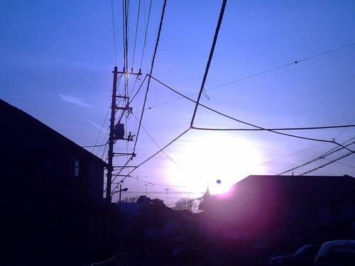 sunset 2...白熱灯