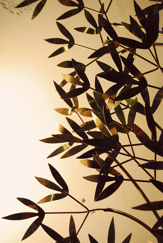 SS13_Vintage_Leaves[2009]