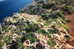 Mare 34 (Puglia Turismo) Tags: mare lungomare salento puglia vacanze scogliera costaadriatica macchiamediterranea otrantosantacesarea
