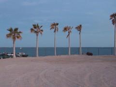 100_2118 (Seraphim2581) Tags: beach mexico rockypoint peasco