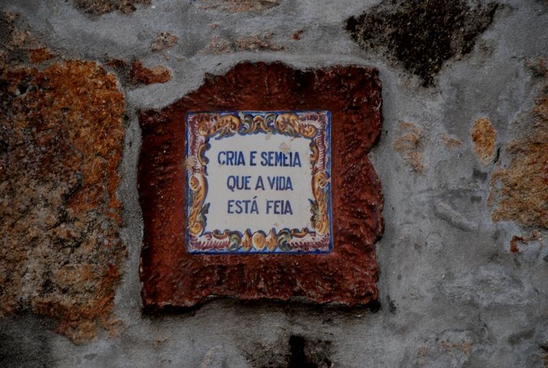 Touguinha 014