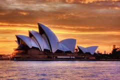 Opera house rising