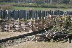 Neuer Zaun im Garten Haithabu 19-04-2009