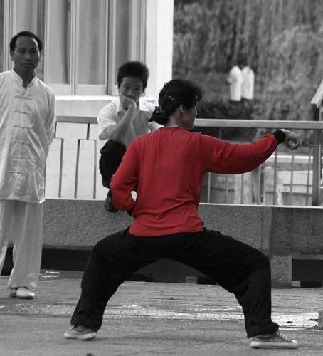 Wushu (by niklausberger)