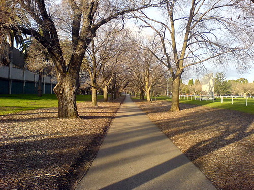 Path Running Through Princes Park