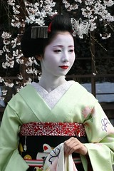Mamehana (abbey j) Tags: woman flower japan butterfly cherry dance spring kyoto blossom maiko geisha 京都 sakura 祇園 kimono obi gion miyako kansai hanami haru odori 関西 shirakawa japón 春 芸者 kanzashi 芸妓 舞妓 都をどり shidarezakura 巽橋 tatsumibashi mamehana