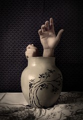 (Fer Gregory) Tags: flores flower tree art mexicana canon out table mexico eos hands photographer escape hand artistic fingers manos bowl mexican vase getting cloth fotografia mexicano fotografo mantel jarron escaping 40d mywinners fernandogregory canoneos40d canon40d fergregory fernandogregorymilan