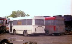 'New' arrivals. (Renown) Tags: buses strike coaches lothian seddon minersstrike singledecker midibus edinburghcorporation berresfordmotors stoniersbuses wstoniersonsltd pennineiv penninecoachcraft berresfordofcheddleton cfs108l cfs109l