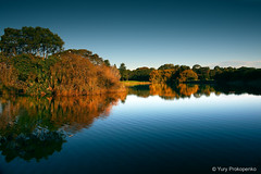 Reflections (-yury-) Tags: park sky lake tree water reflections centennial pond sydney australia nsw