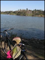 bike_vasona1303