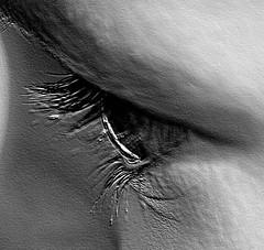 Eye 2 (SelFelin) Tags: eye closeup wales cymru llygaid ukchild