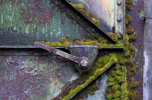 Moss Handle