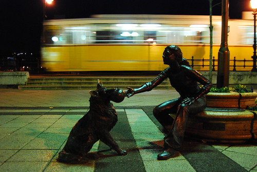 Budapest yellow tram&dog-girl 4amproject