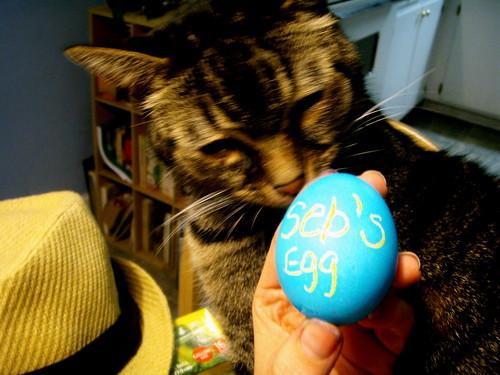seb's egg