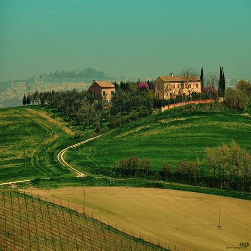 Rural Landscape/5 - Macerata