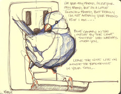 blue canary (Jennifer Kraska) Tags: blue moleskine sketch jennifer canary kraska
