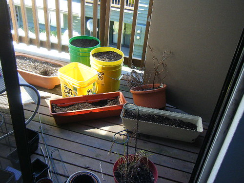 before: unkempt balcony garden mess