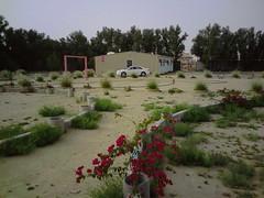 صورة0029 (lateefkuwait) Tags: في تاريخ المزرعة 452009
