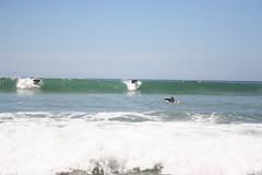 IMG_6712 (Alex Correia) Tags: praia odeceixe 2009 vicentina