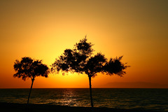 trees at sunset (esther**) Tags: ocean life trees light sunset sea summer two sky orange sun sunlight seascape mountains reflection tree beach water colors beautiful sunshine june yellow landscape fun island gold golden amazing sand scenery holidays europe paradise mare colours view dusk postcard silhouettes sunny beachlife greece together shore romantic serene summertime greekislands rhodes happydays twotrees greekisland interestingness62 interestingness305 interestingness37 holidaysvacanzeurlaub xxxxxx