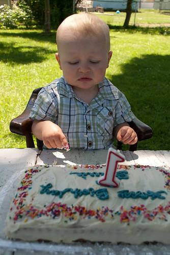 Bowie's 1st Birthday Cake-1