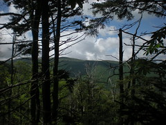 64 - View From Little East Fork Trail