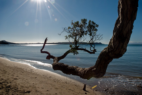Kawakawa Bay