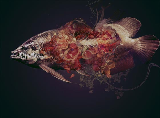 arte_digital_pinturas