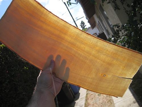 veneer-like Ficus sheet