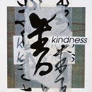 Project Kindness (1996) by Amy Loewan
