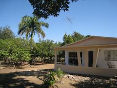 IMG_1499 (Tehhen) Tags: dominicanrepublic repblicadominicana clavellina dajabn