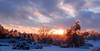 0359 (aithom2) Tags: uk trees sunset sky sun snow storm ice clouds woods arboretum universityofkentucky ourkentucky