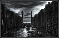 The Doors of Perception (Joel Tjintjelaar) Tags: bw zeeland zealand pilings dionysian groyne vlissingen groin williamblake groynes flushing thedoors groins selenium blacksky dishoek aldoushuxley thedoorsofperception themarriageofheavenandhell apollonian ysplix goldstaraward darkestdreams tjintjelaar monochromaticaberration flushingorvlissingenwasoneofthestrickenareasofthisdisasterin1953 didyouknowthataldoushuxleydiedexactthesamedayasjfkennedy wetshoesagainasiwasstandinginthewater verylowangledshot environmentalpictures dodgingandburningtillyouburnaholeonyourscreen 1953flooddisasterinzealand ggwttwerqnuiytotywrrcqc zzskasdarerebeqwwerwrwewe thegatetoheavenorhell