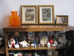 Curio Cabinet (e.e.reilly) Tags: shells glass coral vintage frames cabinet antique butterflies prints rabbits curiosities bats curios dreampet jeremyfish carygrant blenko bookplates rearrangeddesign