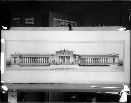 Architectural drawing of proposed Field Museum building