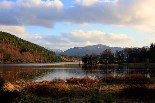 A Beautiful Loch (possibly Loch Alvie)