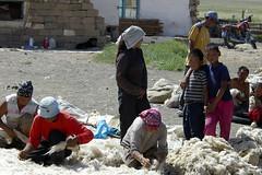 IMGP2527 (Henk de Regt) Tags: 2005 yak natuur gobi klooster ulaanbaatar paarden ger nomaden woestijn ovoo tsetserleg pech mongoli kamelen gobiwoestijn gerkamp